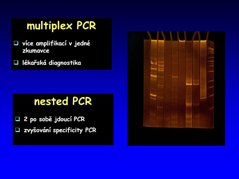 multiplex PCR nested PCR
