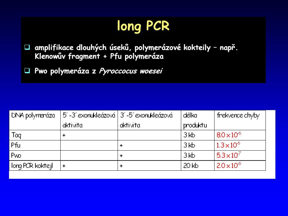 long PCR amplifikace dlouhých úseků, polymerázové kokteily – např. Klenowův fragment + Pfu polymeráza.