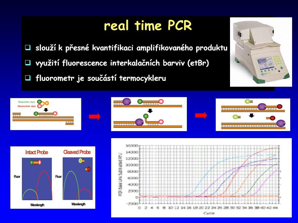 real time PCR slouží k přesné kvantifikaci amplifikovaného produktu