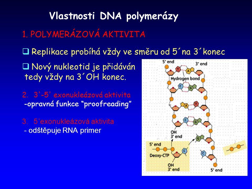 Vlastnosti DNA polymerázy