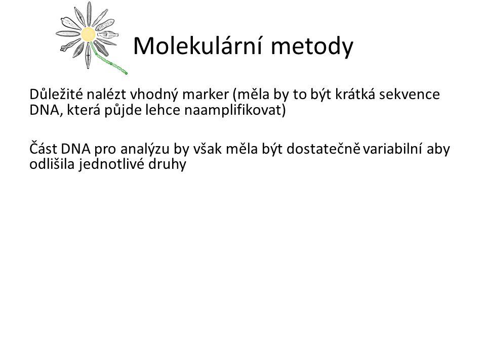 Molekulární metody
