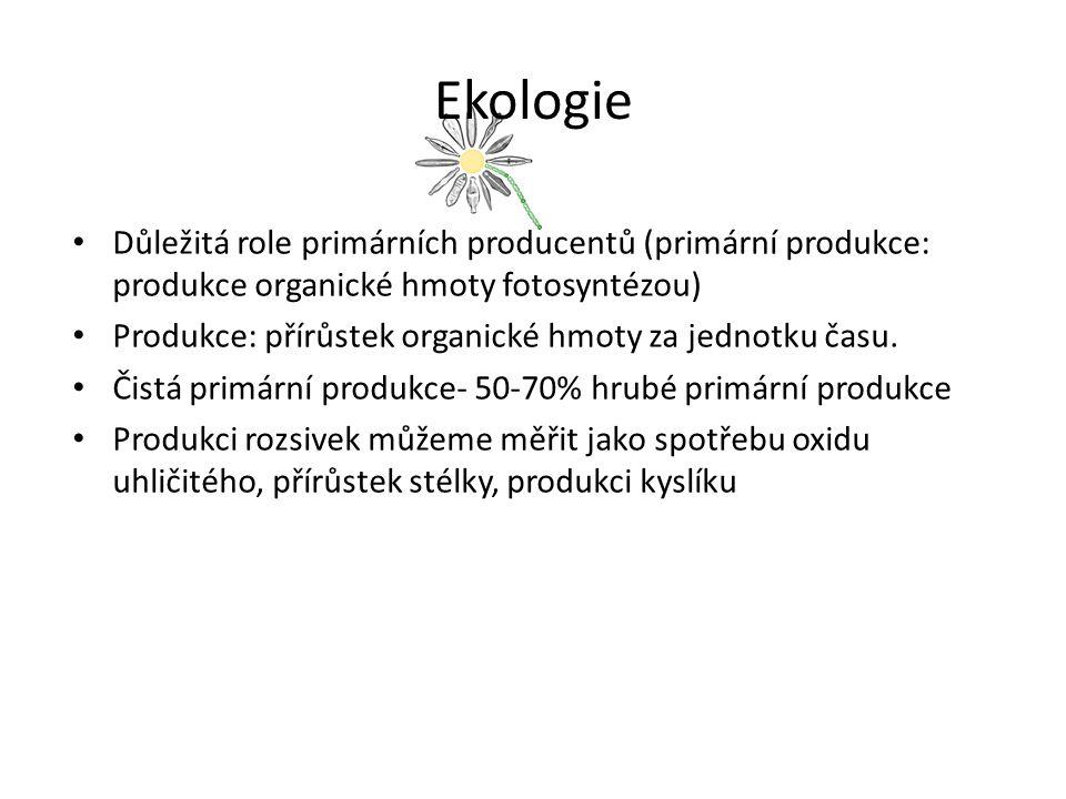Ekologie Důležitá role primárních producentů (primární produkce: produkce organické hmoty fotosyntézou)
