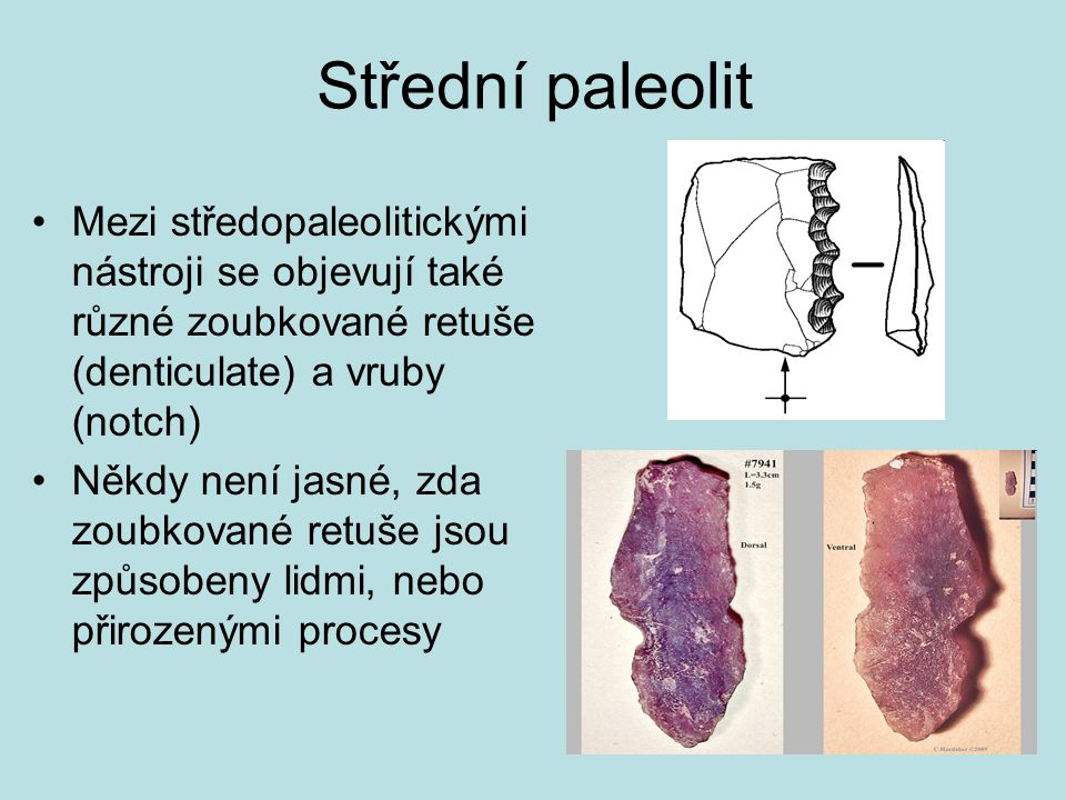 Střední paleolit Mezi středopaleolitickými nástroji se objevují také různé zoubkované retuše (denticulate) a vruby (notch)