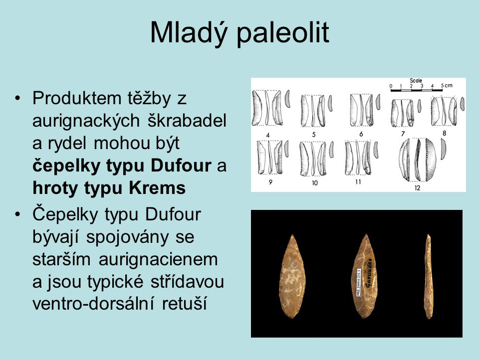 Mladý paleolit Produktem těžby z aurignackých škrabadel a rydel mohou být čepelky typu Dufour a hroty typu Krems.