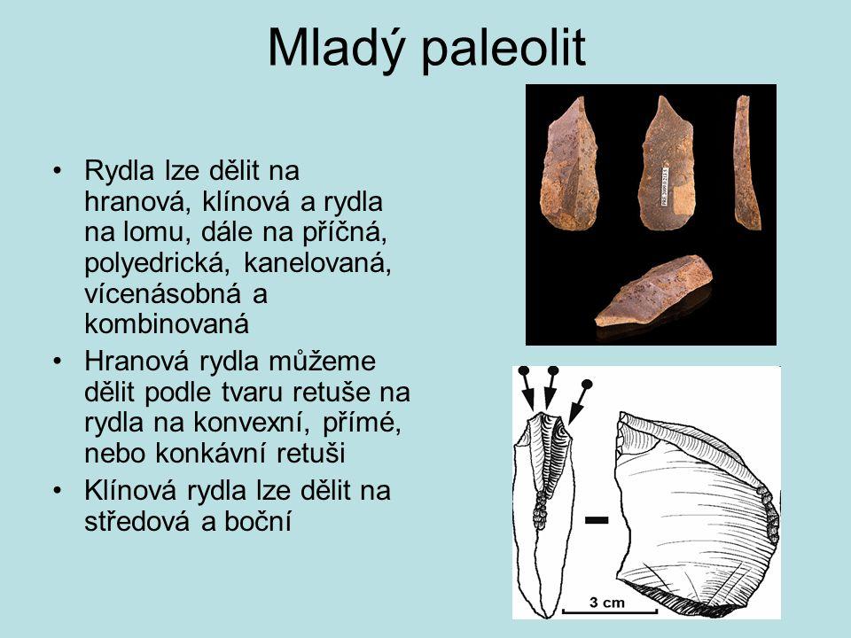 Mladý paleolit Rydla lze dělit na hranová, klínová a rydla na lomu, dále na příčná, polyedrická, kanelovaná, vícenásobná a kombinovaná.