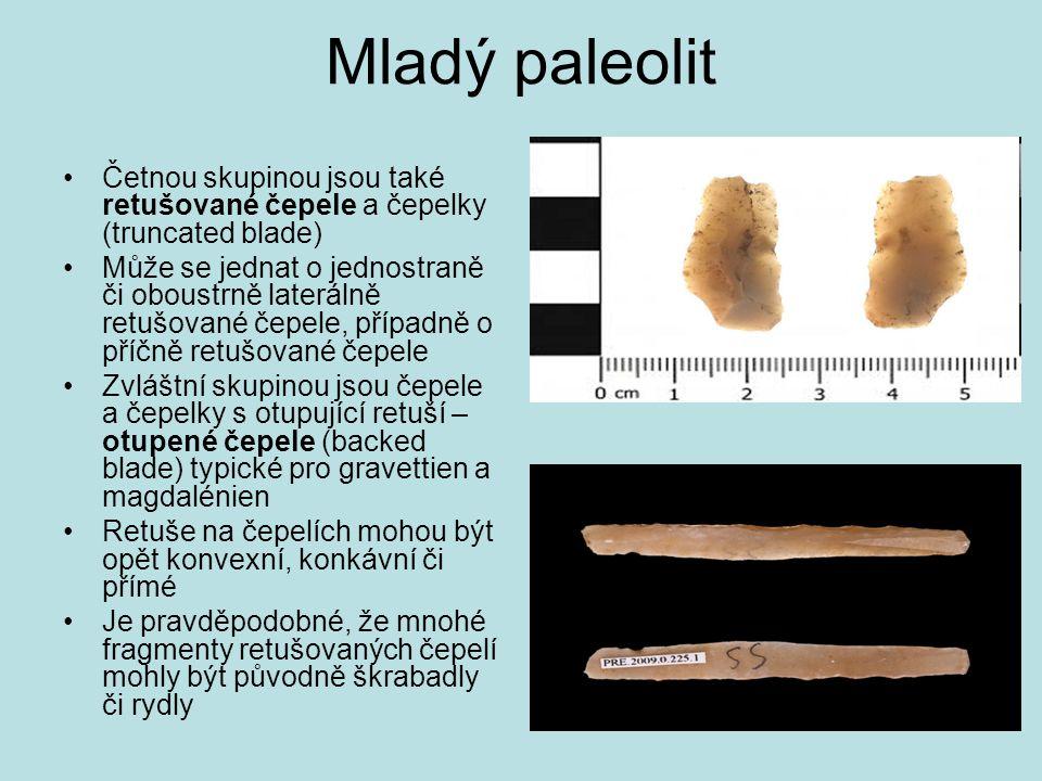 Mladý paleolit Četnou skupinou jsou také retušované čepele a čepelky (truncated blade)