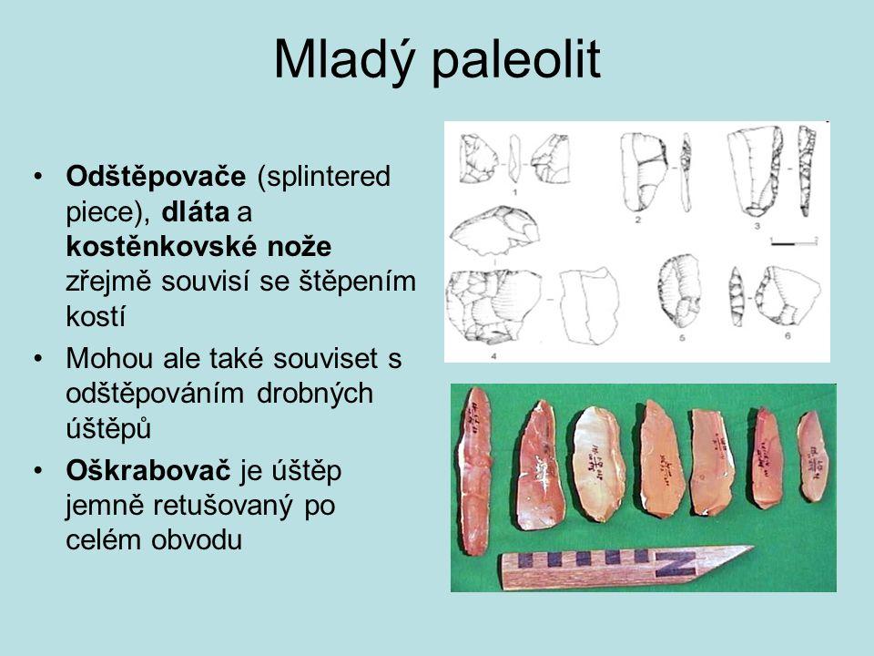 Mladý paleolit Odštěpovače (splintered piece), dláta a kostěnkovské nože zřejmě souvisí se štěpením kostí.