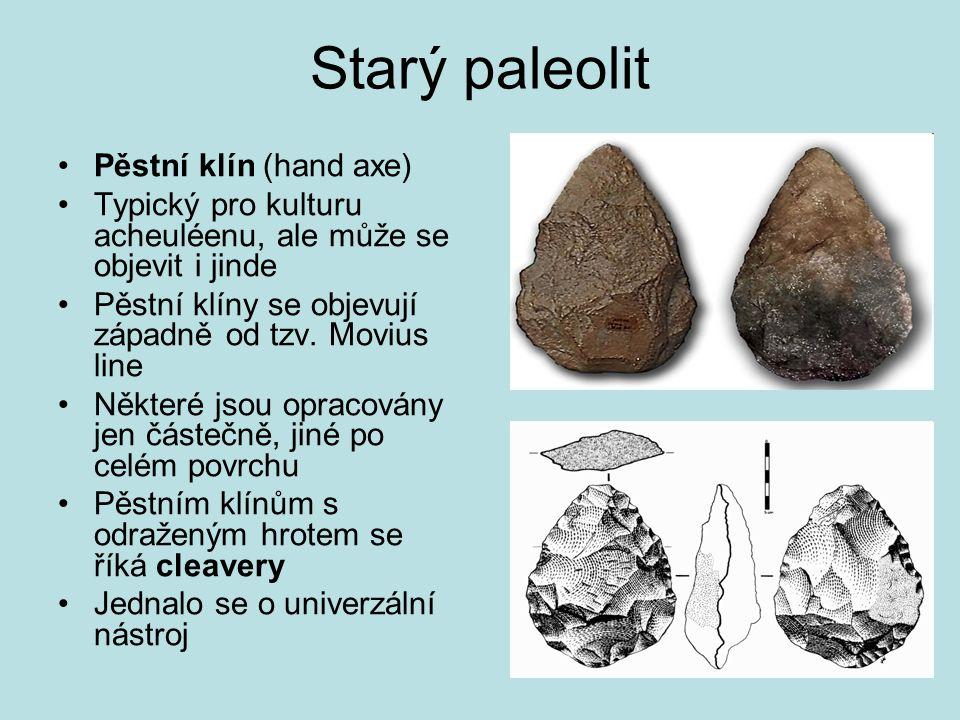 Starý paleolit Pěstní klín (hand axe)