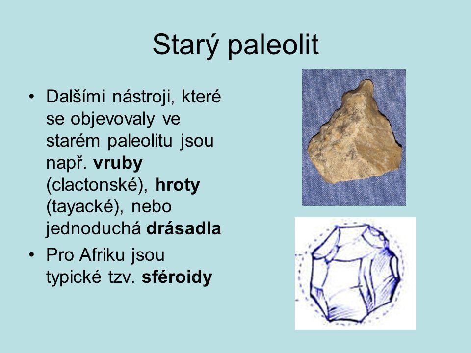 Starý paleolit Dalšími nástroji, které se objevovaly ve starém paleolitu jsou např. vruby (clactonské), hroty (tayacké), nebo jednoduchá drásadla.