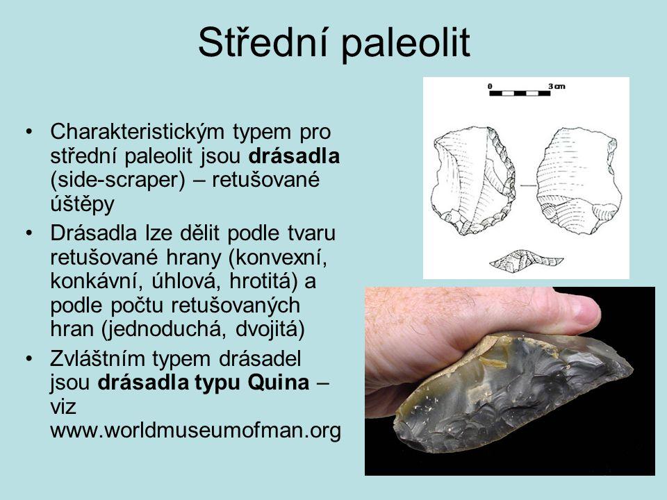 Střední paleolit Charakteristickým typem pro střední paleolit jsou drásadla (side-scraper) – retušované úštěpy.