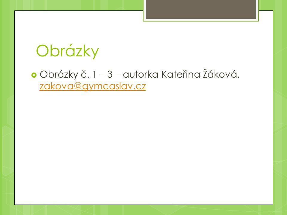 Obrázky Obrázky č. 1 – 3 – autorka Kateřina Žáková, zakova@gymcaslav.cz