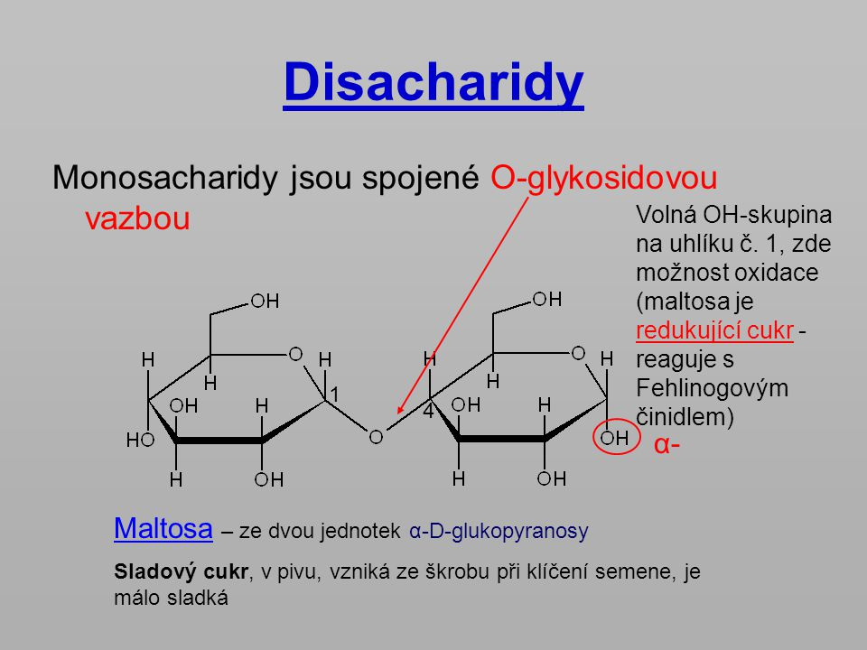 Disacharidy Monosacharidy jsou spojené O-glykosidovou vazbou α-