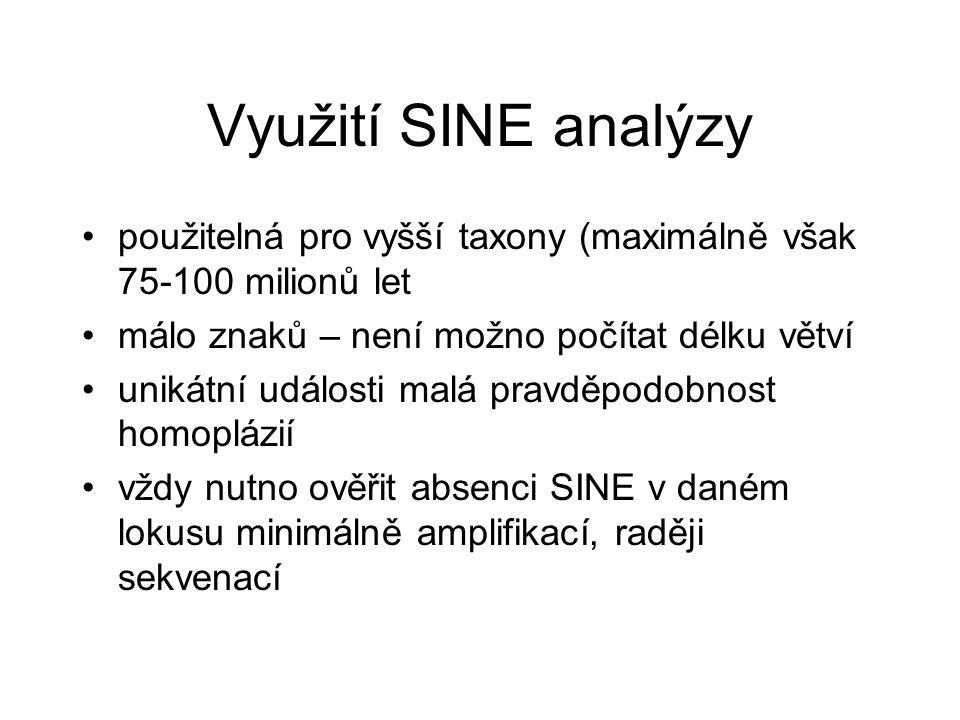 Využití SINE analýzy použitelná pro vyšší taxony (maximálně však 75-100 milionů let. málo znaků – není možno počítat délku větví.