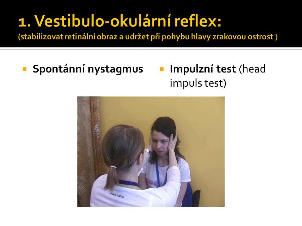 1. Vestibulo-okulární reflex: (stabilizovat retinální obraz a udržet při pohybu hlavy zrakovou ostrost )