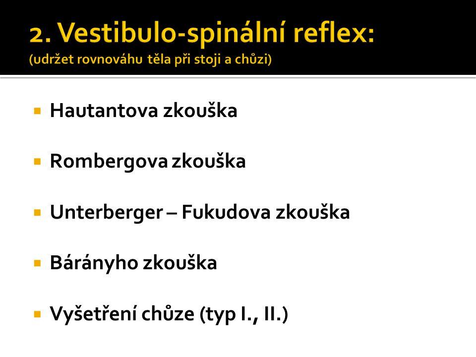 2. Vestibulo-spinální reflex: (udržet rovnováhu těla při stoji a chůzi)