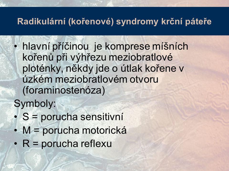 Radikulární (kořenové) syndromy krční páteře