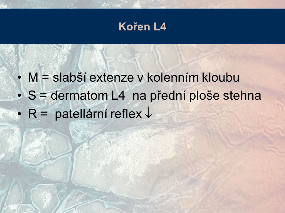 M = slabší extenze v kolenním kloubu