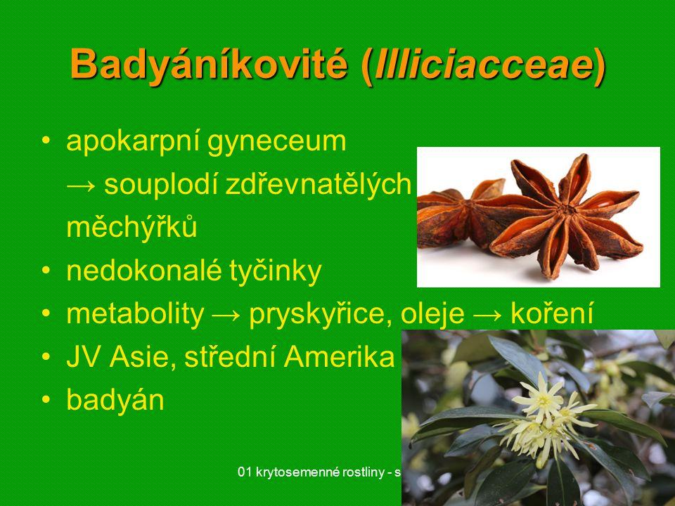 Badyáníkovité (Illiciacceae)