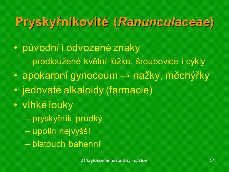 Pryskyřníkovité (Ranunculaceae)