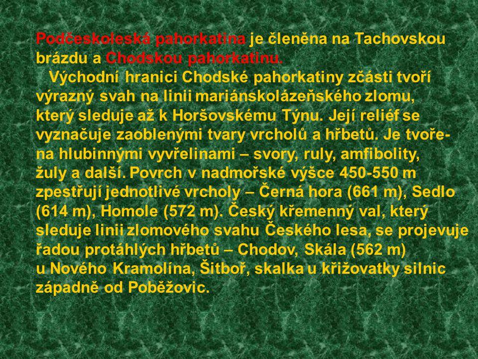Podčeskoleská pahorkatina je členěna na Tachovskou
