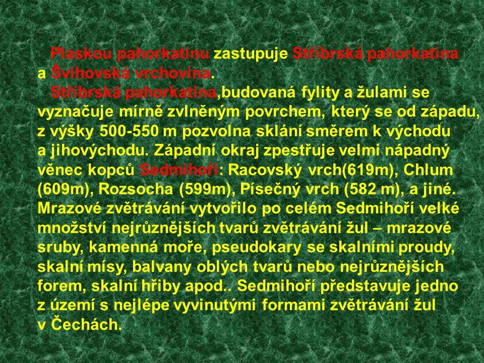 Plaskou pahorkatinu zastupuje Stříbrská pahorkatina