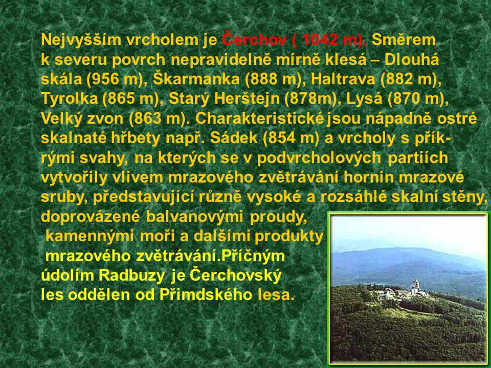 Nejvyšším vrcholem je Čerchov ( 1042 m). Směrem
