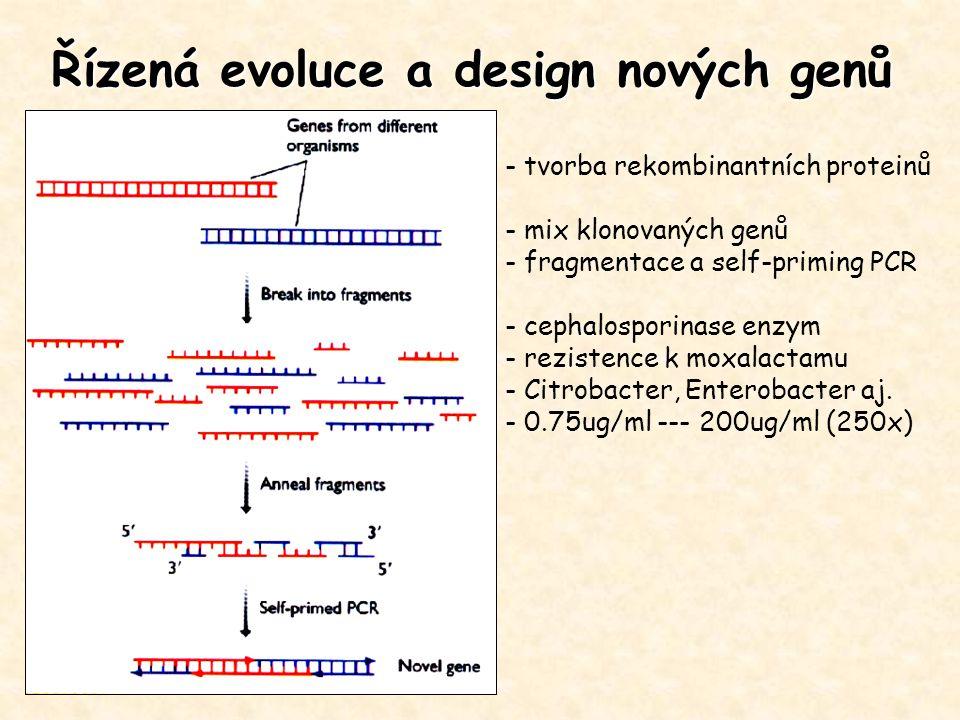 Řízená evoluce a design nových genů