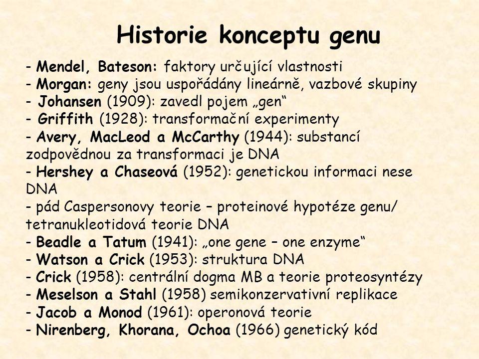 Historie konceptu genu