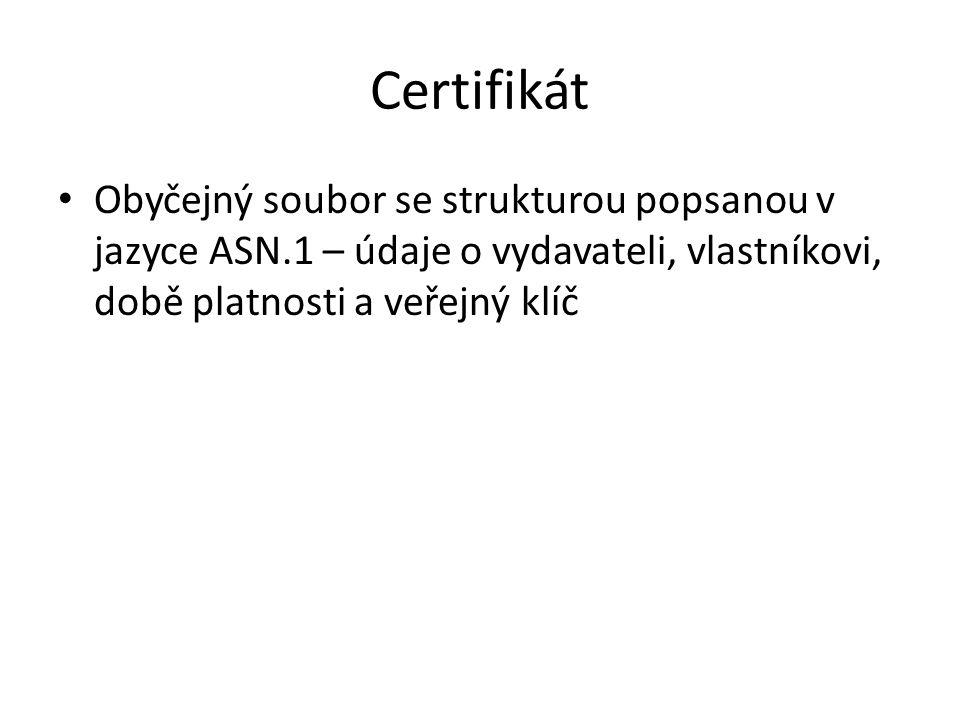 Certifikát Obyčejný soubor se strukturou popsanou v jazyce ASN.1 – údaje o vydavateli, vlastníkovi, době platnosti a veřejný klíč.