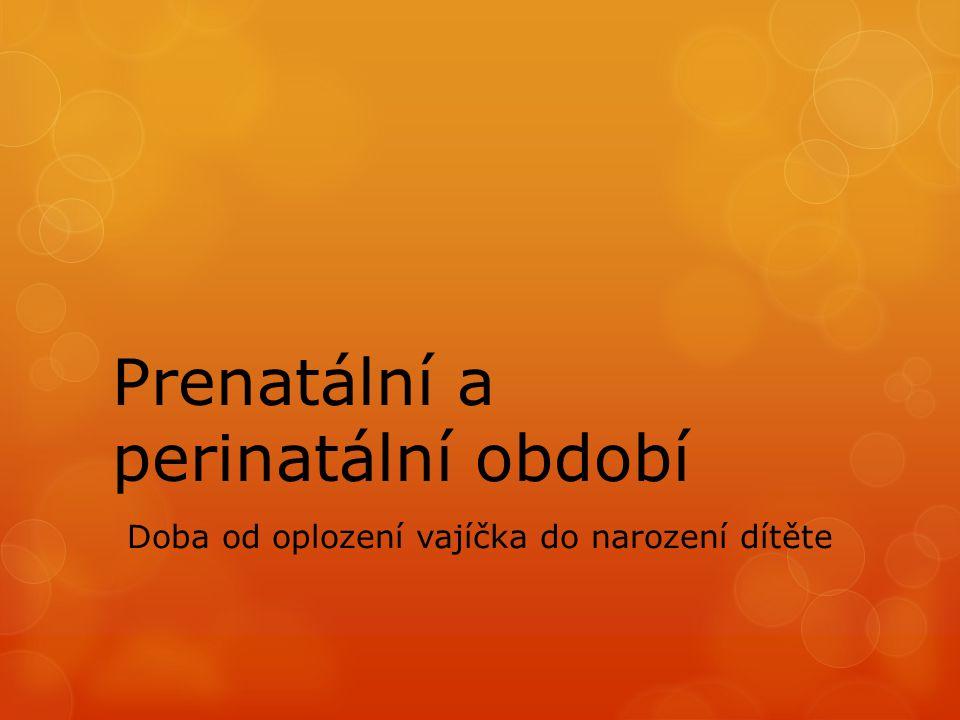Prenatální a perinatální období