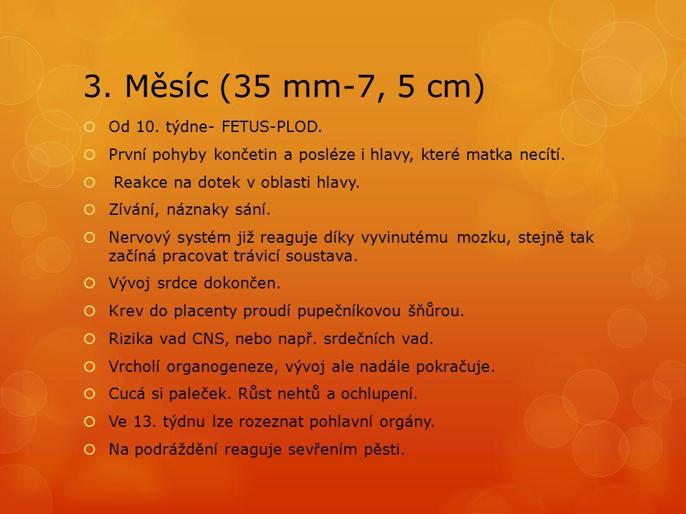 3. Měsíc (35 mm-7, 5 cm) Od 10. týdne- FETUS-PLOD.