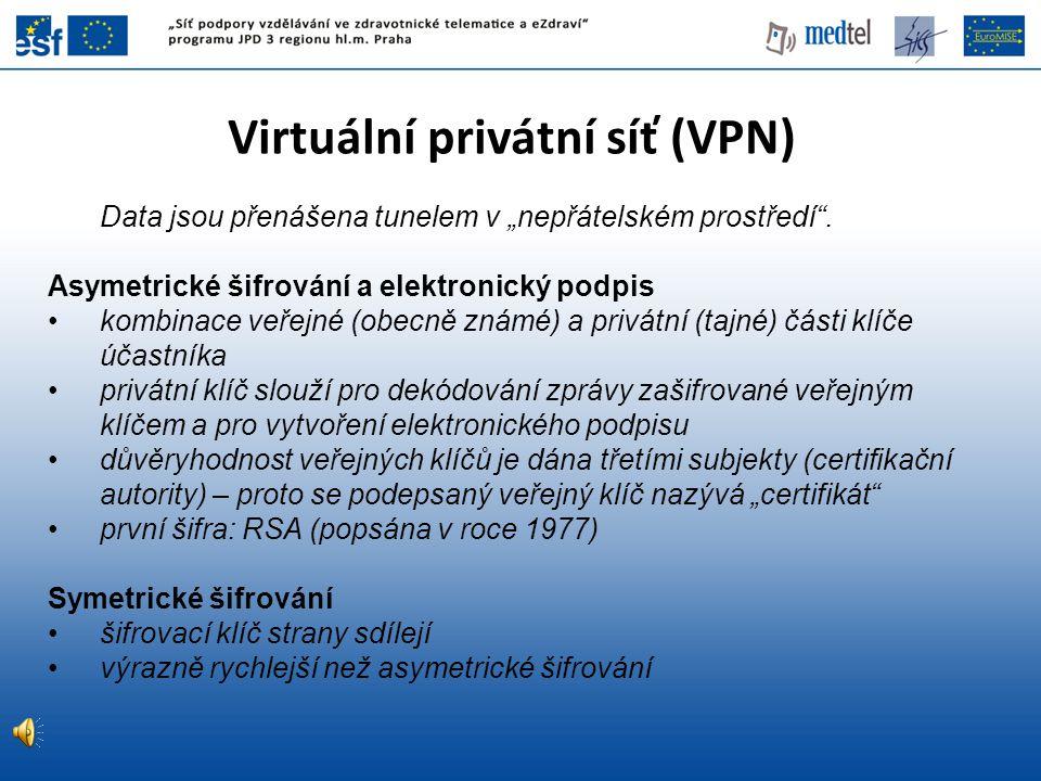 Virtuální privátní síť (VPN)