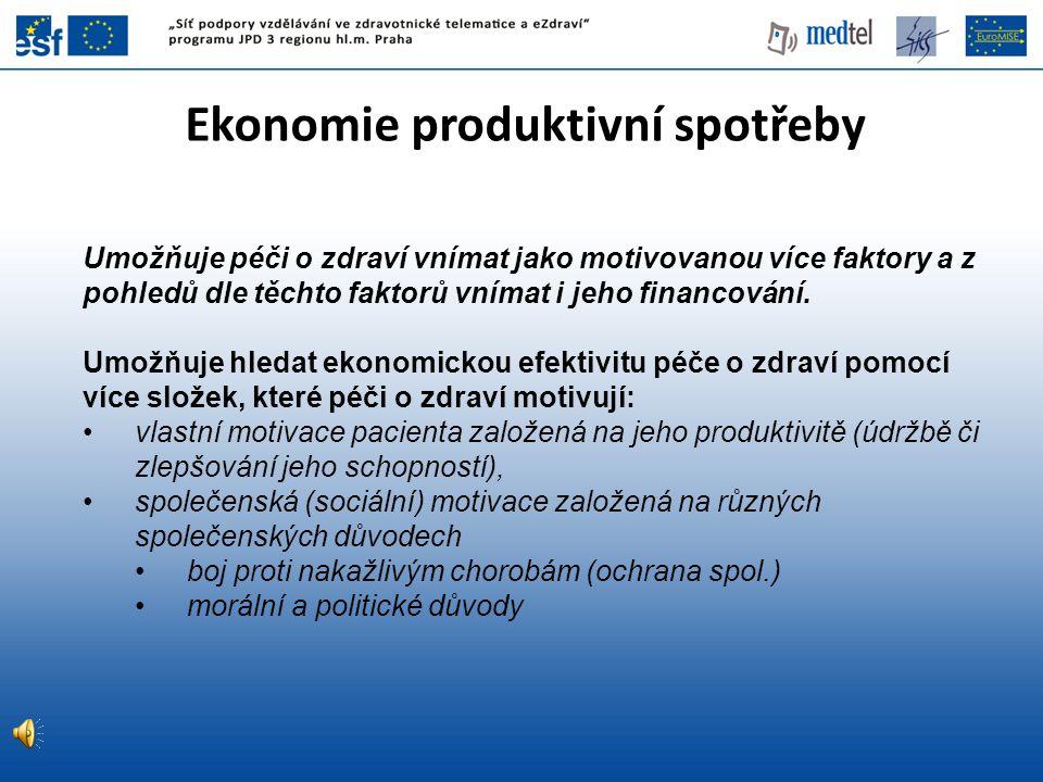 Ekonomie produktivní spotřeby