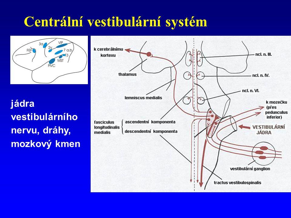 Centrální vestibulární systém
