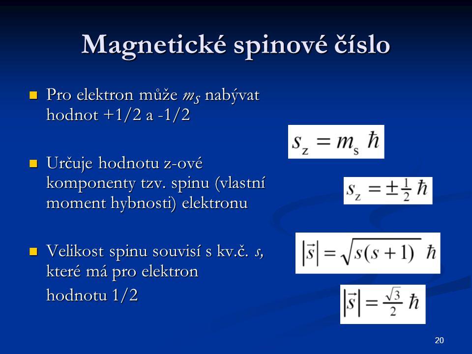 Magnetické spinové číslo
