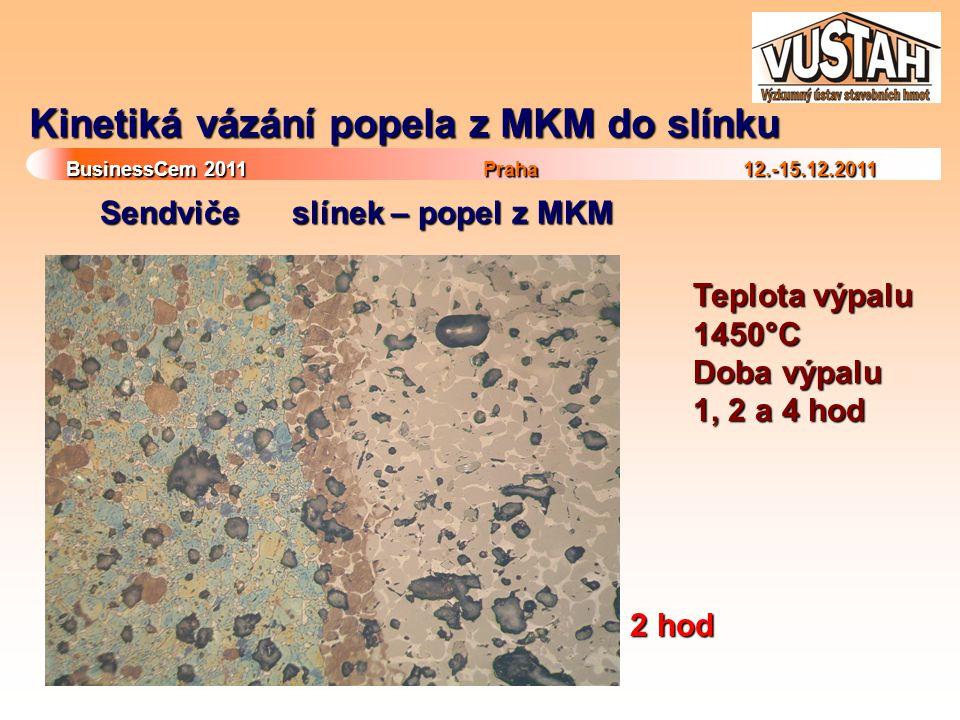 Kinetiká vázání popela z MKM do slínku