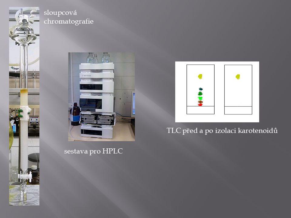 sloupcová chromatografie