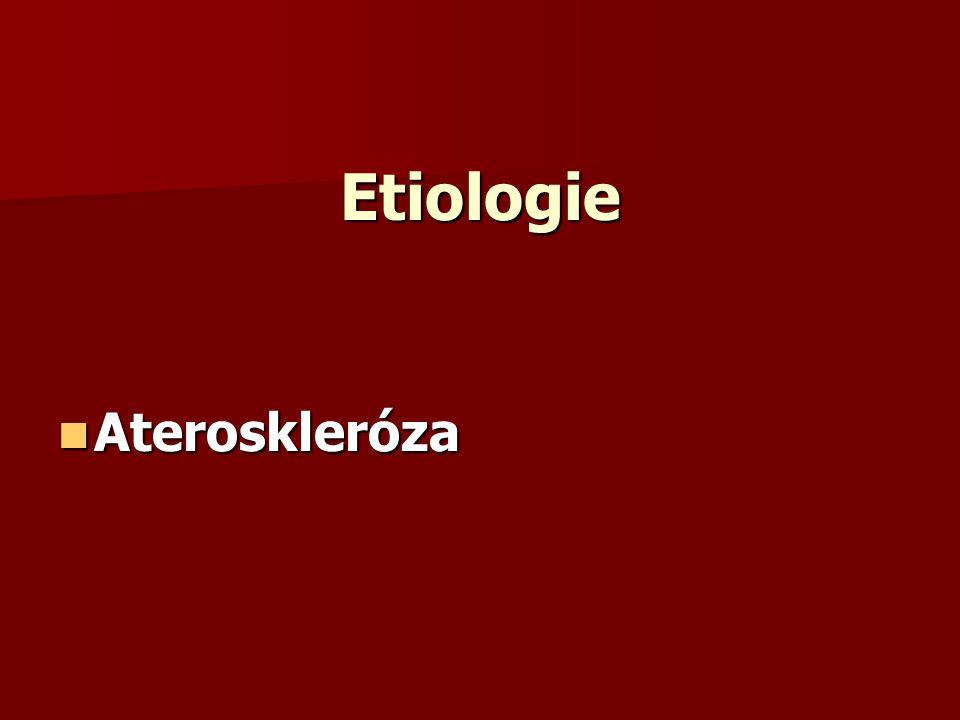 Etiologie Ateroskleróza