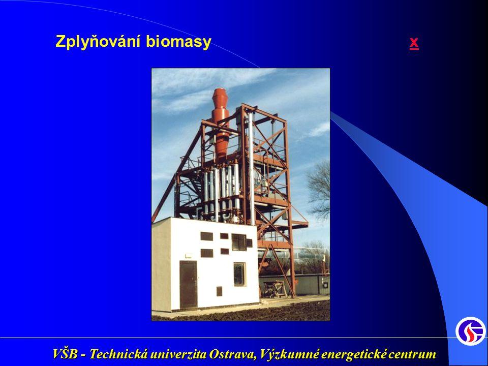 Zplyňování biomasy x