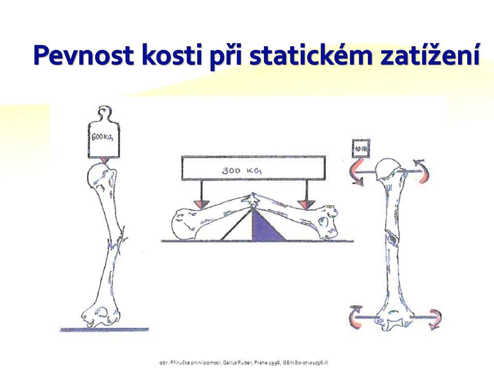 Pevnost kosti při statickém zatížení