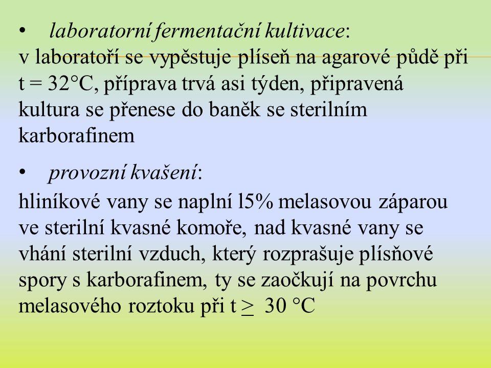 laboratorní fermentační kultivace:
