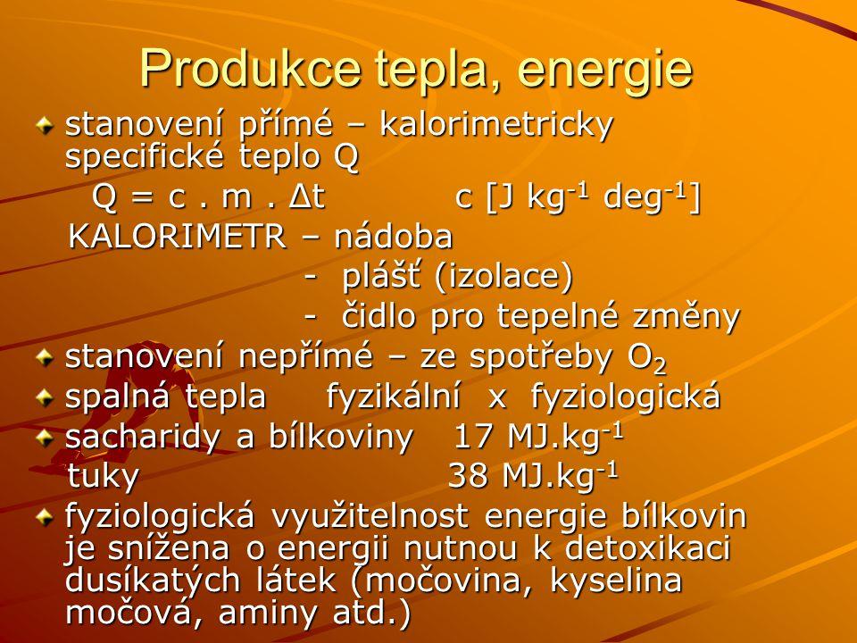 Produkce tepla, energie