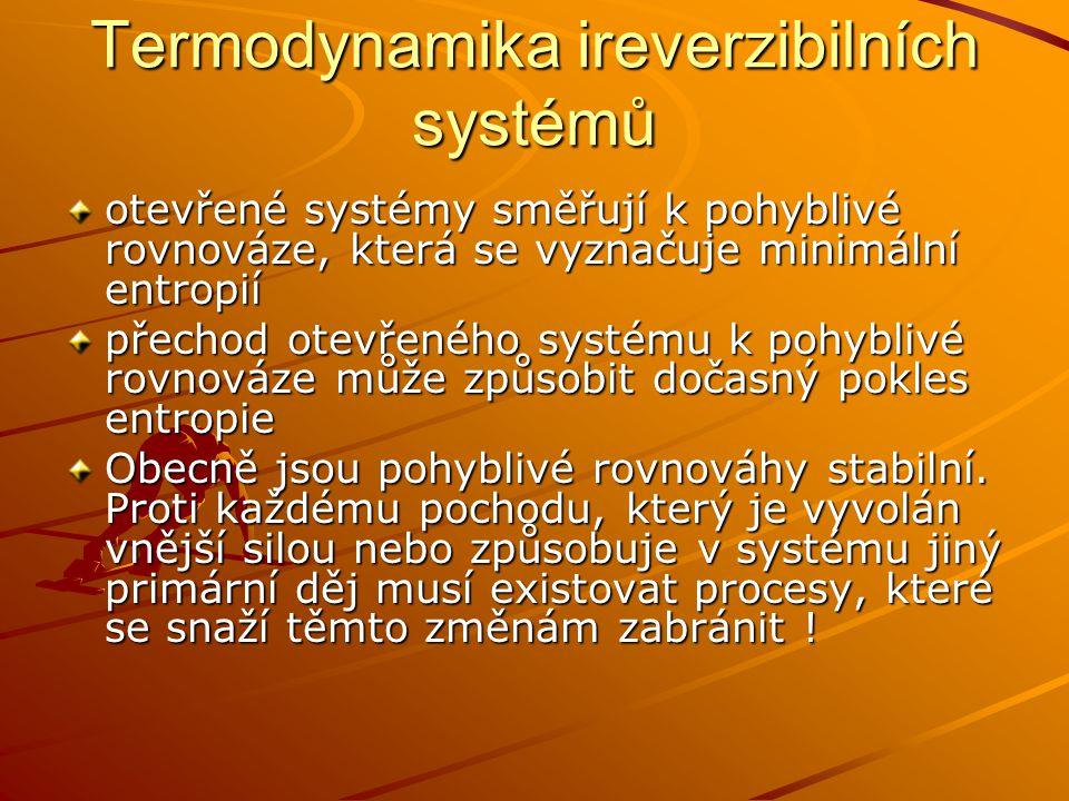 Termodynamika ireverzibilních systémů