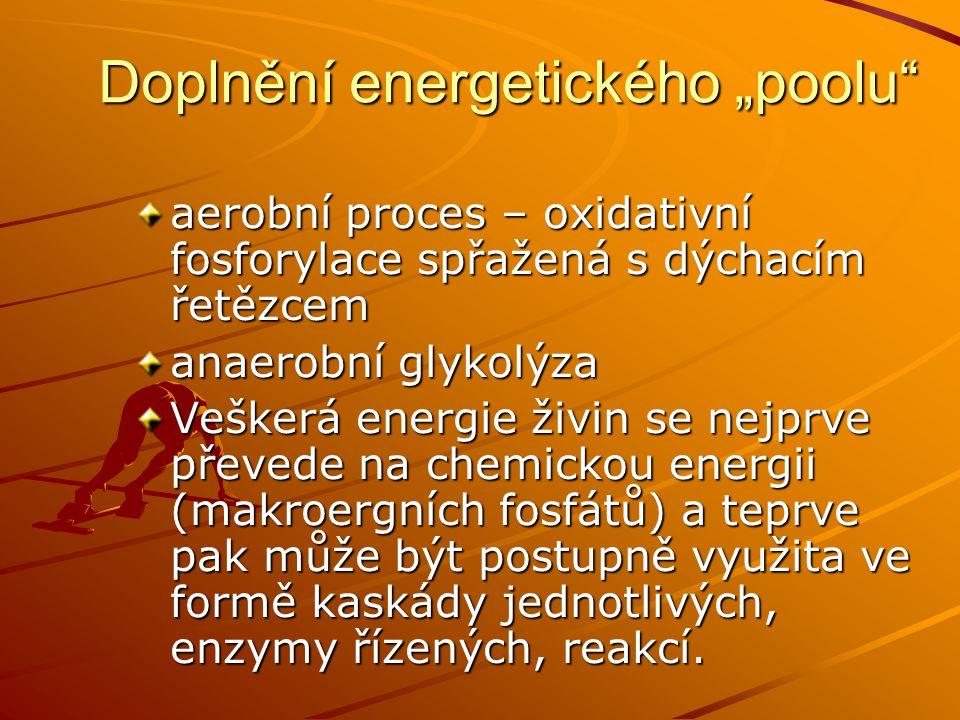 """Doplnění energetického """"poolu"""