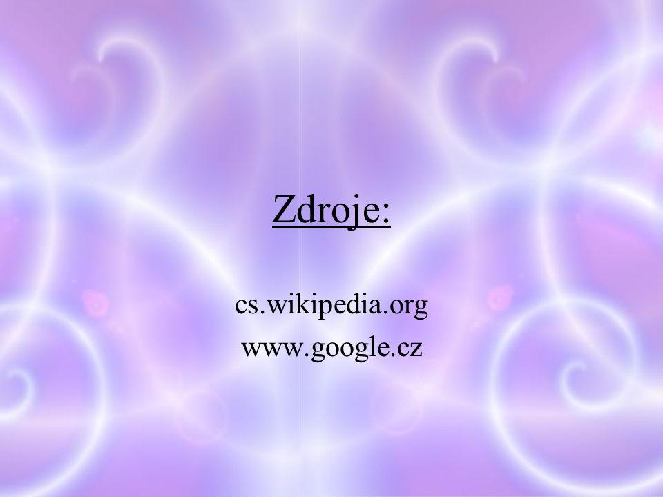 cs.wikipedia.org www.google.cz