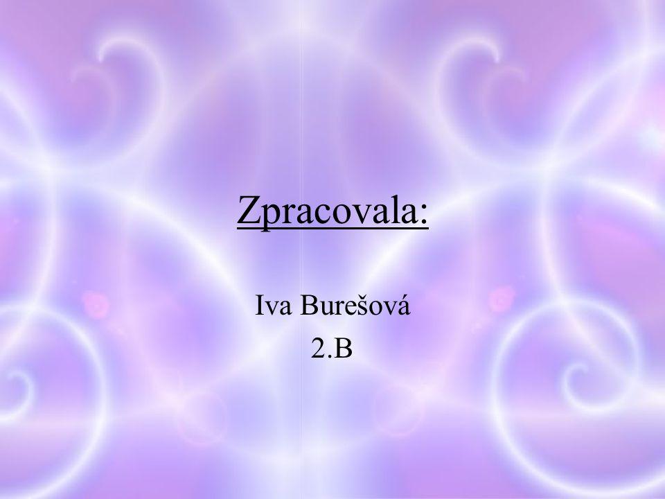 Zpracovala: Iva Burešová 2.B