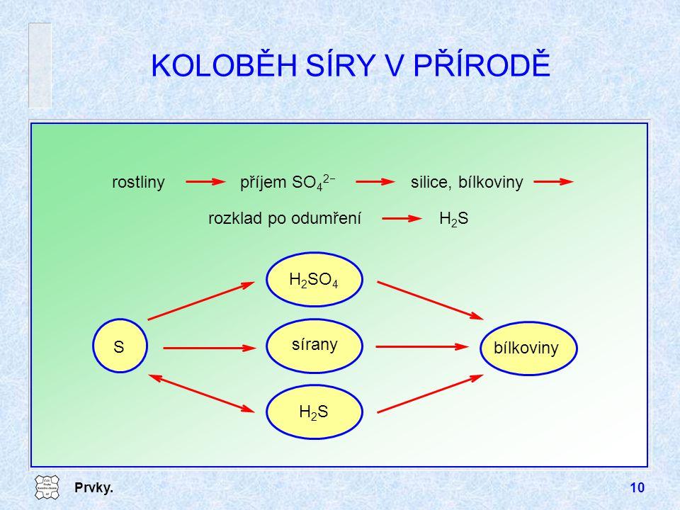 KOLOBĚH SÍRY V PŘÍRODĚ silice, bílkoviny rostliny příjem SO42- H2S