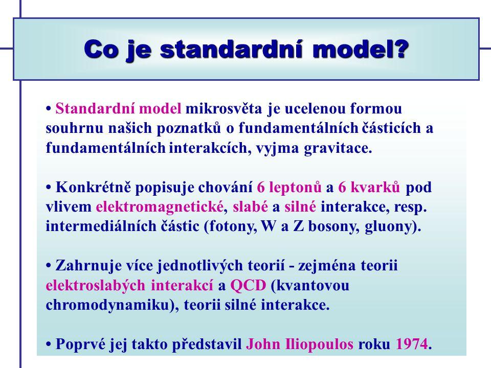 Co je standardní model