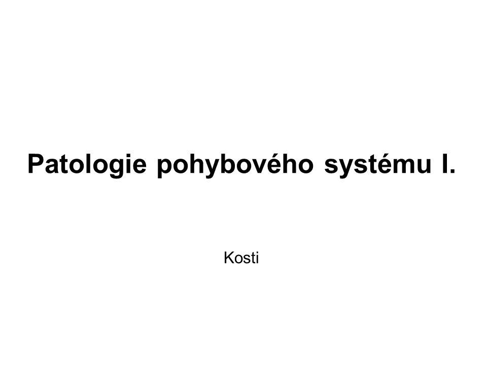 Patologie pohybového systému I.