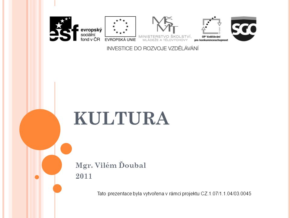 Tato prezentace byla vytvořena v rámci projektu CZ.1.07/1.1.04/03.0045
